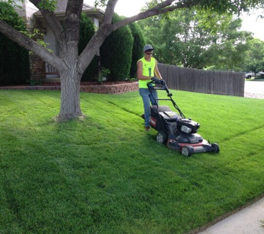 Lawn Service-New Braunfels TX Landscape Designs & Outdoor Living Areas-We offer Landscape Design, Outdoor Patios & Pergolas, Outdoor Living Spaces, Stonescapes, Residential & Commercial Landscaping, Irrigation Installation & Repairs, Drainage Systems, Landscape Lighting, Outdoor Living Spaces, Tree Service, Lawn Service, and more.